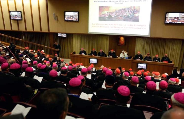 catholic_synod_w747_h373_q100